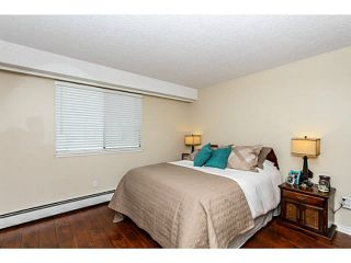 """Photo 12: 304 47 AGNES Street in New Westminster: Downtown NW Condo for sale in """"FRASER HOUSE"""" : MLS®# V1115941"""