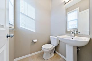 Photo 25: 172 NEW BRIGHTON PT SE in Calgary: New Brighton House for sale : MLS®# C4142859