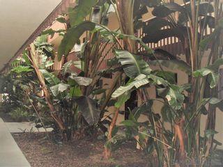 Photo 22: CHULA VISTA Condo for sale : 1 bedrooms : 490 FOURTH AVENUE #34