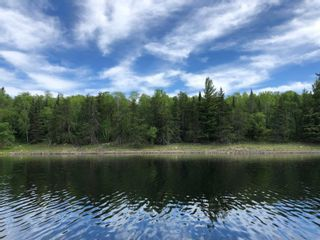 Photo 11: 2 Middle LK in Kenora: Vacant Land for sale : MLS®# TB212525