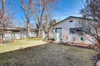 Photo 43: 116 Bowers Street NE: Airdrie Detached for sale : MLS®# A1095413
