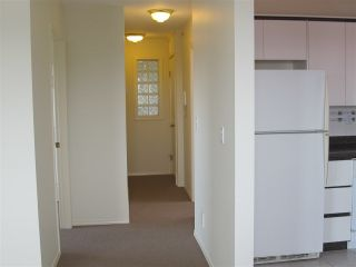 Photo 4: 388 E 49TH Avenue in Vancouver: South Vancouver House for sale (Vancouver East)  : MLS®# R2224126