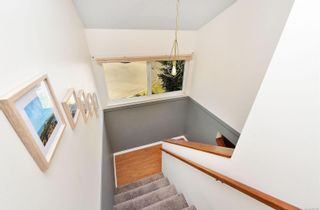 Photo 22: 685 Daffodil Ave in Saanich: SW Marigold House for sale (Saanich West)  : MLS®# 882390