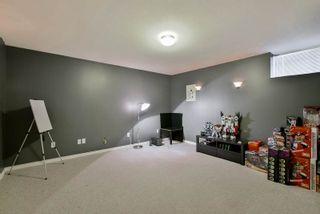 Photo 14: 24327 102 AVENUE in Maple Ridge: Albion House for sale : MLS®# R2082906