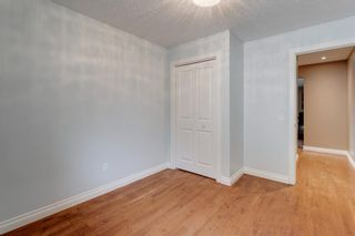 Photo 26: 5007 Nolan Road NW in Calgary: North Haven Detached for sale : MLS®# A1100705