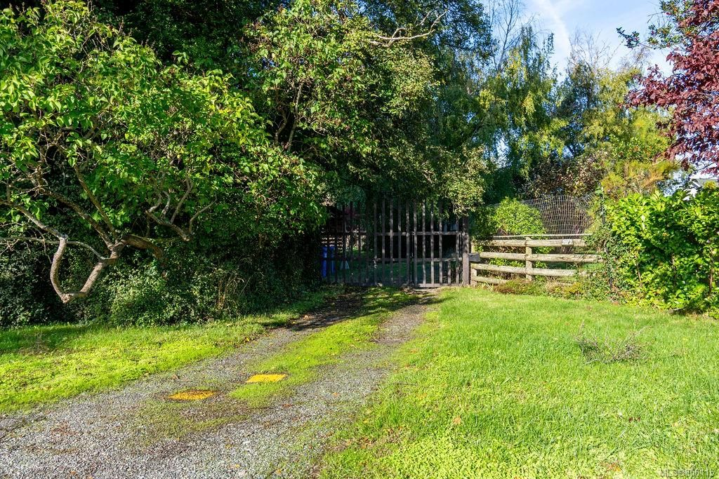 Main Photo: 2072 Hampshire Rd in : OB North Oak Bay Land for sale (Oak Bay)  : MLS®# 858115