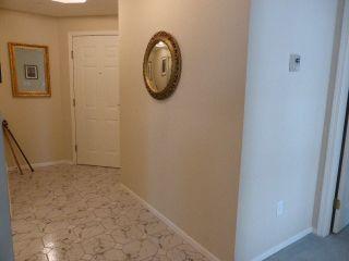 Photo 3: 202 3670 BANFF CRT Court: Northlands Home for sale ()  : MLS®# V1113079