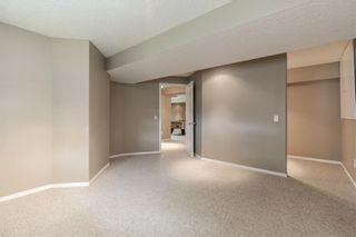 Photo 24: 42 CITADEL PEAK Mews NW in Calgary: Citadel Detached for sale : MLS®# C4300765