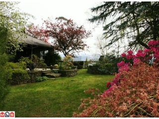 Photo 10: 2217 OLYMPIA Place in Abbotsford: Abbotsford East House for sale : MLS®# F1010291