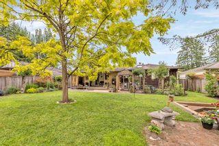 Photo 27: 11785 210 Street in Maple Ridge: Southwest Maple Ridge House for sale : MLS®# R2599519