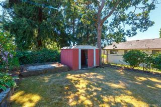 Photo 18: 4188 Bracken Ave in VICTORIA: SE Lake Hill House for sale (Saanich East)  : MLS®# 792670