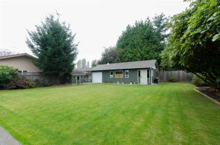 Photo 17: 4929 FENTON DRIVE in Delta: Hawthorne House for sale (Ladner)  : MLS®# R2009590