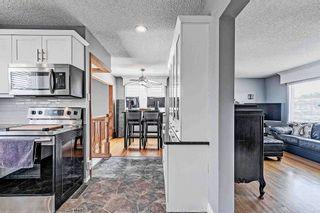 Photo 21: 8419 52 Street in Edmonton: Zone 18 House for sale : MLS®# E4246813