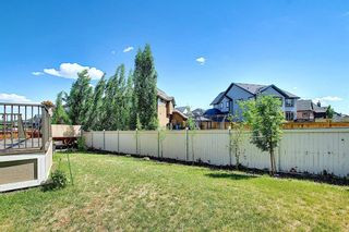 Photo 48: 143 STONEMERE Green: Chestermere Detached for sale : MLS®# A1123634