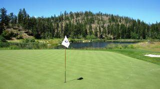 Photo 49: 208 Chicopee Road in Vernon: Predator Ridge House for sale (North Okanagan)  : MLS®# 10187149