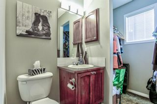 Photo 29: 17 Copperfield Court SE in Calgary: Copperfield Row/Townhouse for sale : MLS®# A1056969