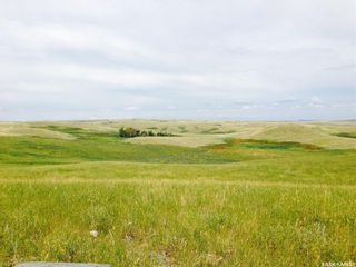 Photo 14: Diamond D Land and Cattle Ltd. in Lacadena: Farm for sale (Lacadena Rm No. 228)  : MLS®# SK833271