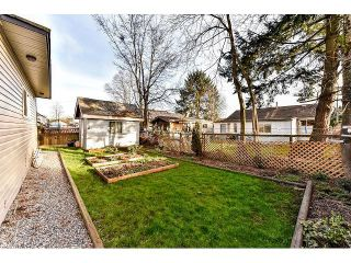 Photo 19: 12720 115B Street in Surrey: Bridgeview House for sale (North Surrey)  : MLS®# F1434187