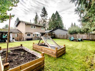 """Photo 31: 4521 199 Street in Langley: Langley City House for sale in """"Hunter Park"""" : MLS®# R2511143"""
