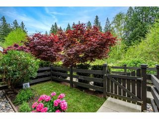 """Photo 2: 64 288 171 Street in Surrey: Pacific Douglas Townhouse for sale in """"The Crossing"""" (South Surrey White Rock)  : MLS®# R2573999"""