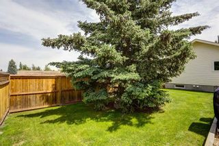 Photo 39: 96 SHAWGLEN Way SW in Calgary: Shawnessy Detached for sale : MLS®# C4303426