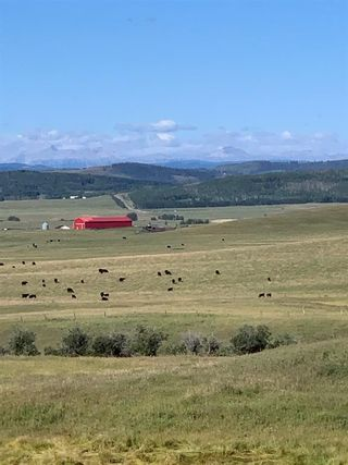 Photo 14: NONE-Highway 549 and 196 St W W-Rural Foothills County-