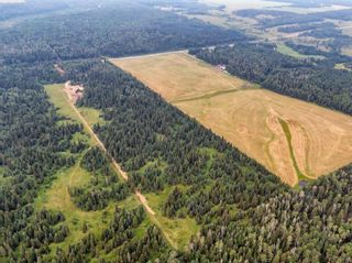Photo 18: 31339 Rge Rd 55: Rural Mountain View County Land for sale : MLS®# A1136736