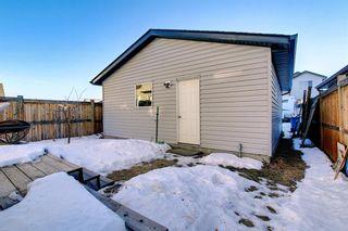 Photo 29: 39 WALDEN Road SE in Calgary: Walden Detached for sale : MLS®# A1062260