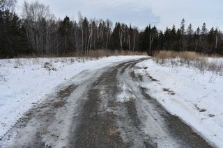 Photo 3: 414 Old Post Road in Clementsport: 400-Annapolis County Vacant Land for sale (Annapolis Valley)  : MLS®# 202102794