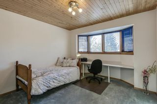 Photo 29: 3030 5 Street SW in Calgary: Rideau Park House for sale : MLS®# C4173181