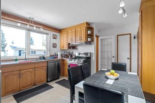 Photo 13: 279 Lynnwood Way NW in Edmonton: Zone 22 House for sale : MLS®# E4265521