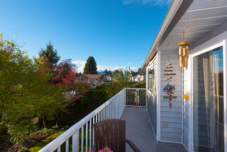 Photo 10: 20489 DALE Drive in Maple Ridge: Southwest Maple Ridge House for sale : MLS®# R2360254