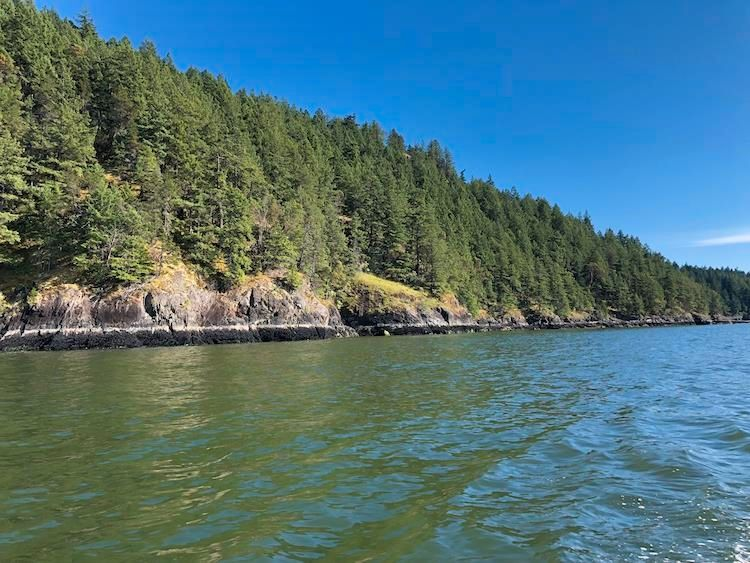 Main Photo: DL 2375: Bowen Island Land for sale : MLS®# R2597532