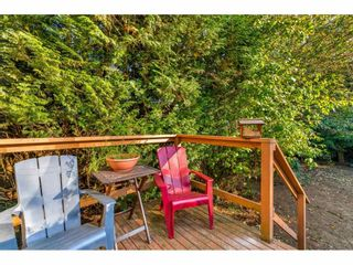 Photo 27: 21198 WICKLUND Avenue in Maple Ridge: Northwest Maple Ridge House for sale : MLS®# R2506044