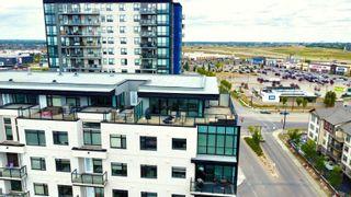 Photo 27:  in Edmonton: Zone 56 Condo for sale : MLS®# E4259823