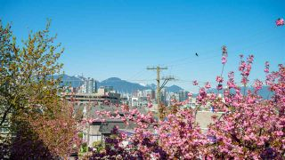 """Photo 12: 19 704 W 7TH Avenue in Vancouver: Fairview VW Condo for sale in """"Heather Park"""" (Vancouver West)  : MLS®# R2568826"""