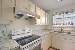 Photo 11: 19 64 Whitnel Court NE in Calgary: Whitehorn Row/Townhouse for sale : MLS®# A1136758
