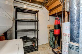 Photo 17: 7416 23 Street SE in Calgary: Ogden Detached for sale : MLS®# C4270963