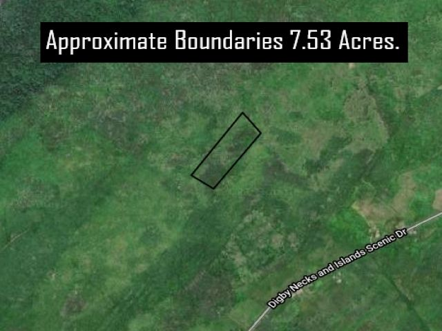 Main Photo: Lot 217 Highway in Centreville: 401-Digby County Vacant Land for sale (Annapolis Valley)  : MLS®# 202109466