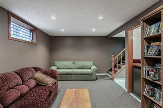 Photo 14: 8304 43 Avenue NW in Calgary: Bowness Detached for sale : MLS®# A1093020