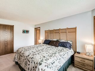 Photo 23: 216 MT COPPER Park SE in Calgary: McKenzie Lake Detached for sale : MLS®# A1025995