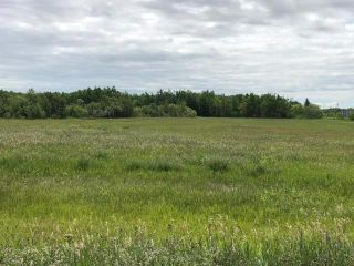 Photo 40: 1028 Governor Road in St Laurent: RM of St Laurent Residential for sale (R19)  : MLS®# 202004514