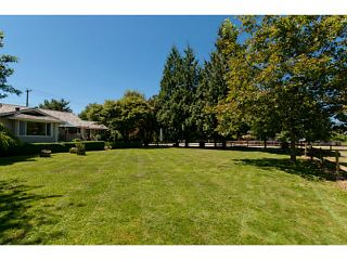 Photo 11: 18905 MCQUARRIE Road in Pitt Meadows: North Meadows House for sale : MLS®# V1018593