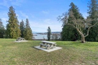 """Photo 6: 224 22 E ROYAL Avenue in New Westminster: Fraserview NW Condo for sale in """"The Lookout"""" : MLS®# R2540226"""