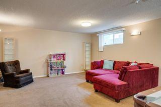 Photo 39: 167 DOUGLAS GLEN Manor SE in Calgary: Douglasdale/Glen Detached for sale : MLS®# A1026145