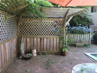 Photo 9: 11724 209 Street in Maple Ridge: Southwest Maple Ridge House for sale : MLS®# R2434650