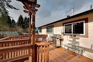 Photo 6: 22604 124th Ave, Maple Ridge V928483 - House/Single Family For Sale