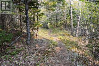 Photo 4: Old Kettle Road in Port Medway: Vacant Land for sale : MLS®# 202113253