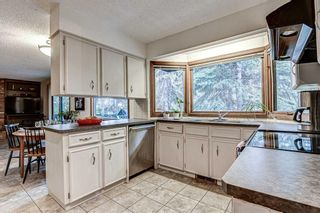 Photo 8: 88 Berkley Rise NW in Calgary: Beddington Heights Detached for sale : MLS®# A1127287