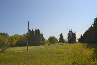 Photo 7: 54325 RR 255: Rural Sturgeon County Rural Land/Vacant Lot for sale : MLS®# E4235892
